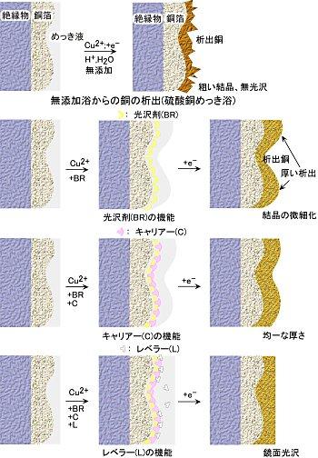 Image7-1.jpg