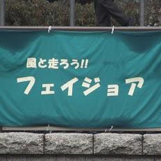 KIF_4327.jpg