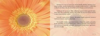duse_a_umeni_03-12-kopie