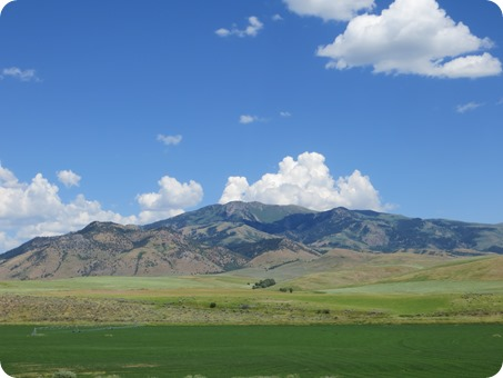 Idaho Fields