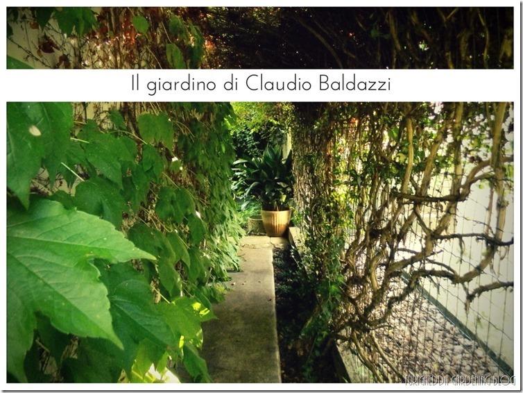 Il giardino di Claudio (16)