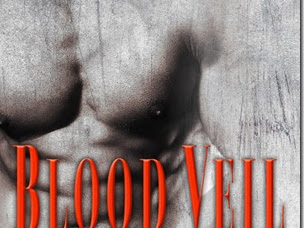 Review: Blood Veil (Mission #2) by Megan Erickson