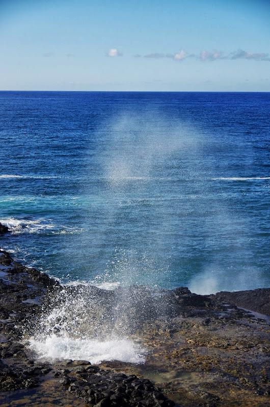 06-27-13 Spouting Horn & Kauai South Shore - IMGP9757.JPG