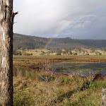 Rainbow from Congewai Valley East trackhead (60141)