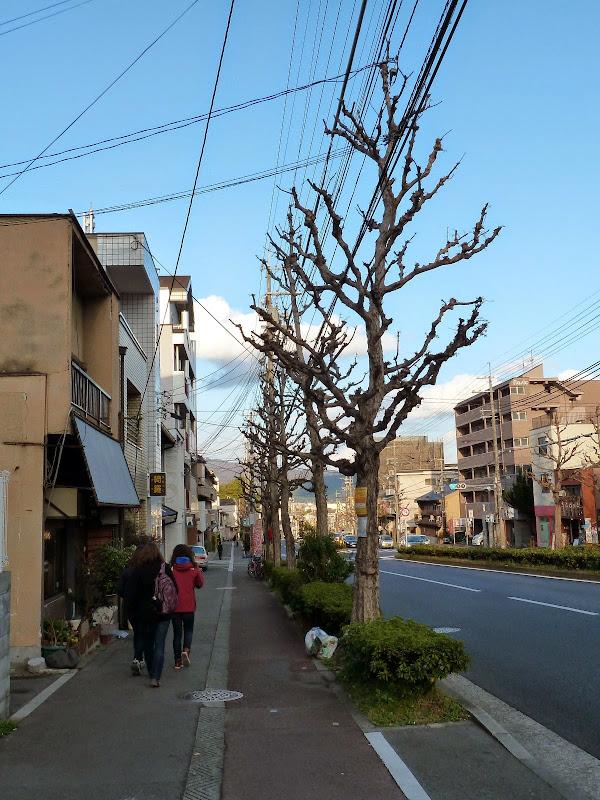 2014 Japan - Dag 8 - mike-P1050821-0356.JPG