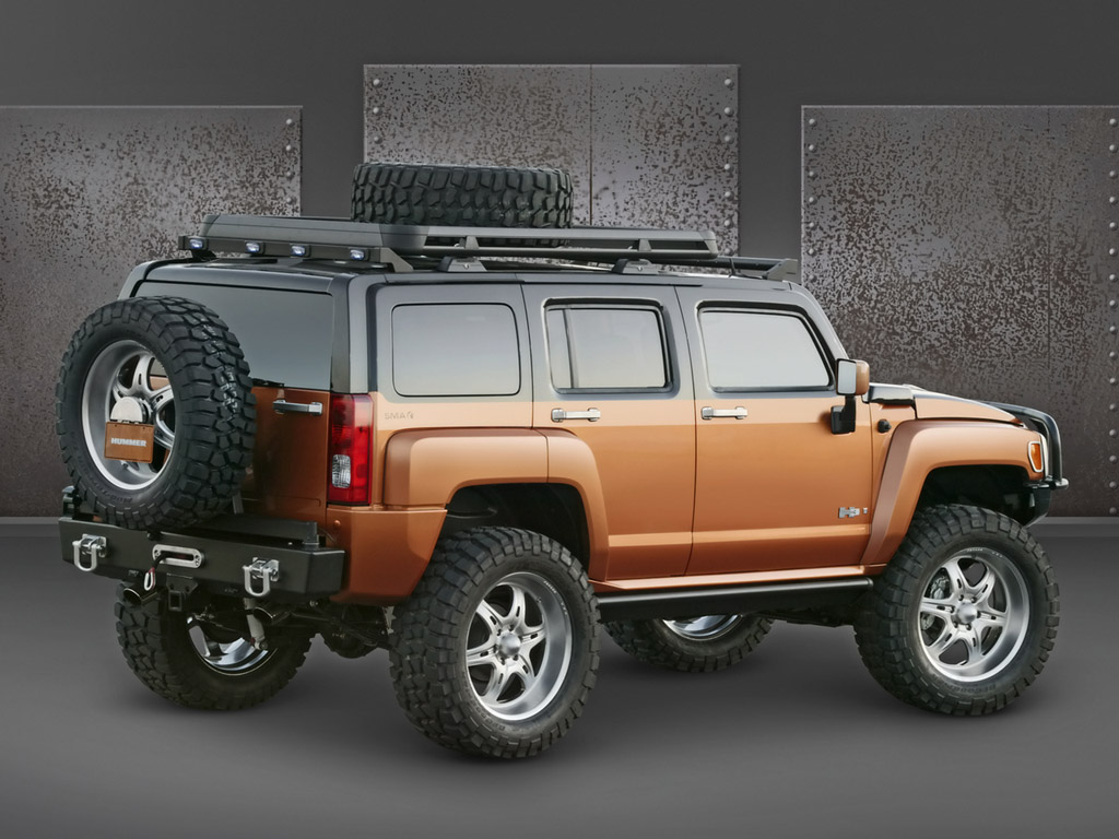 In the USA the price for a Hummer H3 starts from 30.000$ and ends just over  40.000$.In the first months of 2006,about 8000 Hummers
