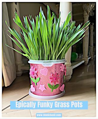 cat grass pots, crafting, making stuff, make cute pots,