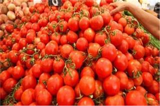 الطماطم في المنام الطماطم الطماطم في الحلم الطماطم المجففة الطماطم المخللة الطماطم للوجه الطماطم فاكهة خضار الطماطم الفاسدة الطماطم للحامل الطماطم في الكيتو