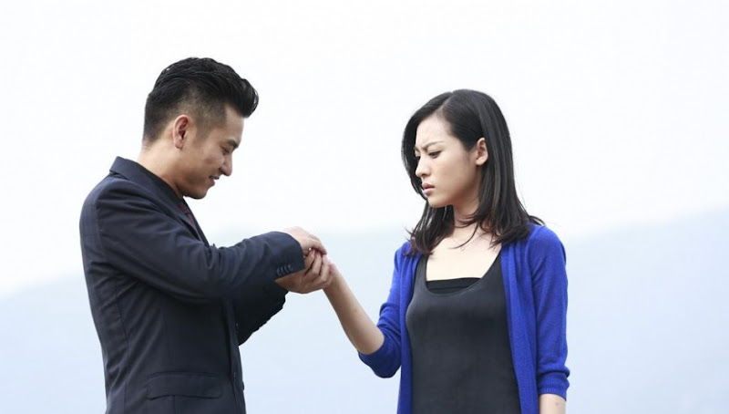 Torn Between Two Lovers / Fu Chou Nu Shen Ban Bu Tian Ya / Xiang Xing Fu Chu Fa China Drama