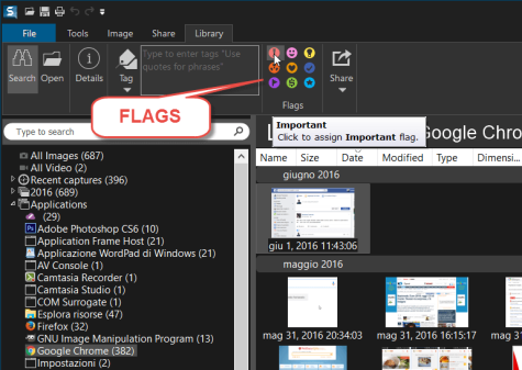 snagit-flags