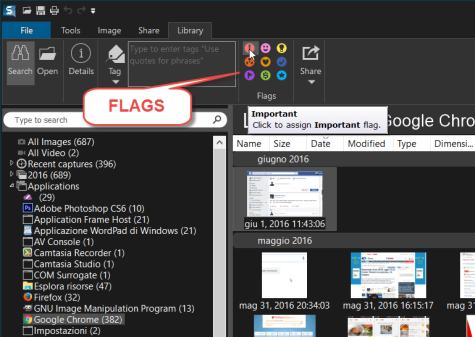 snagit-flags