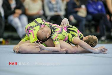 Han Balk Fantastic Gymnastics 2015-2341.jpg