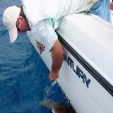 Keys August Fishing with Capt Dave Perkins 010.jpg