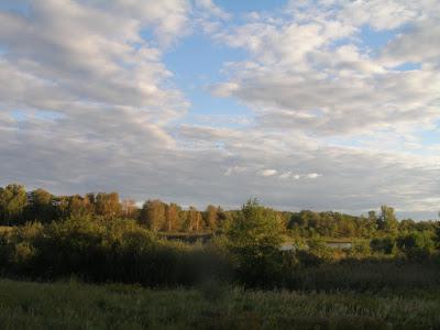 Wernsdorfer See, Ende September, Gosen