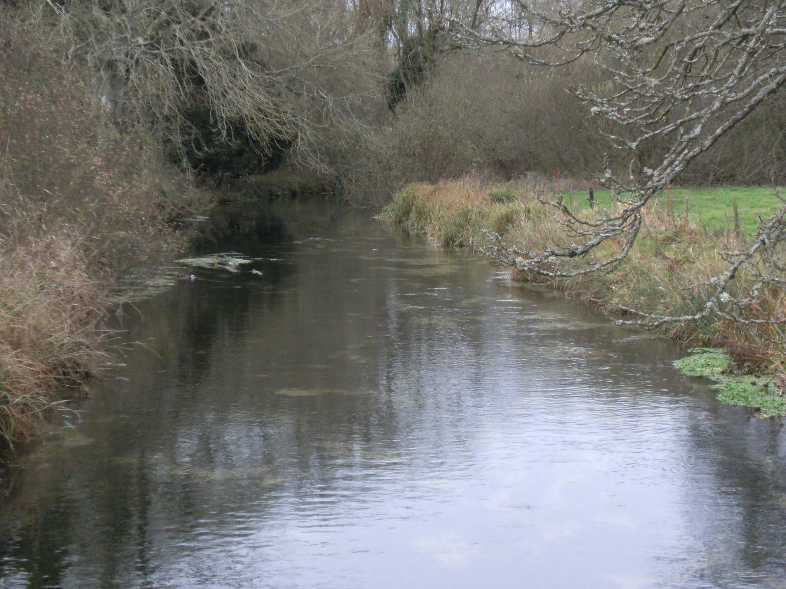 DSCF2717 River Test from Bere Mill bridge