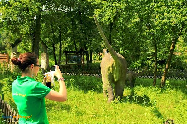 bałtów park dinozaurów - dinozaury z każdej perspektywy