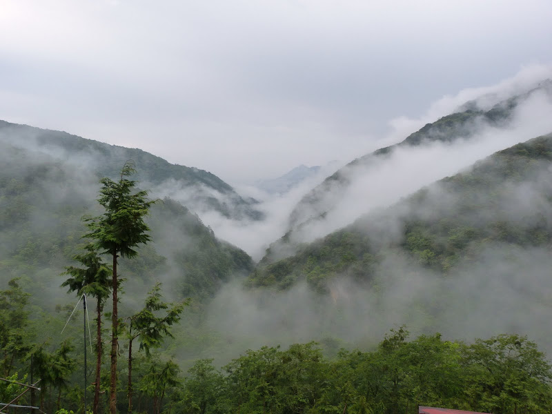 TAIWAN. Weekend Randonnée, Taipei à  Hehuanshan en passant par Puli, retour par les gorges de Taroko - P1280930.JPG