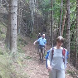 Wanderung Steinegg 05.06.17 (5).jpg