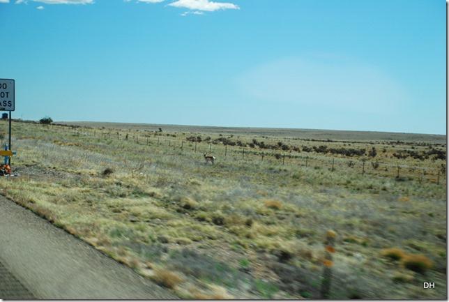 04-14-16 A Alamogordo-Border 54-40-54 (201)