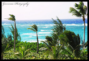 Windy day, at a close up range, View from the Reef Condos. Atlantis-Bahamas