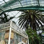 Jardin des serres d'Auteuil (France)
