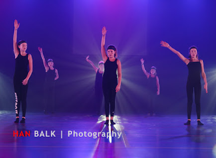 Han Balk VDD2017 ZO ochtend-9185.jpg