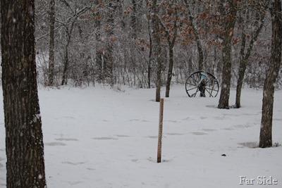 Snow Feb 22