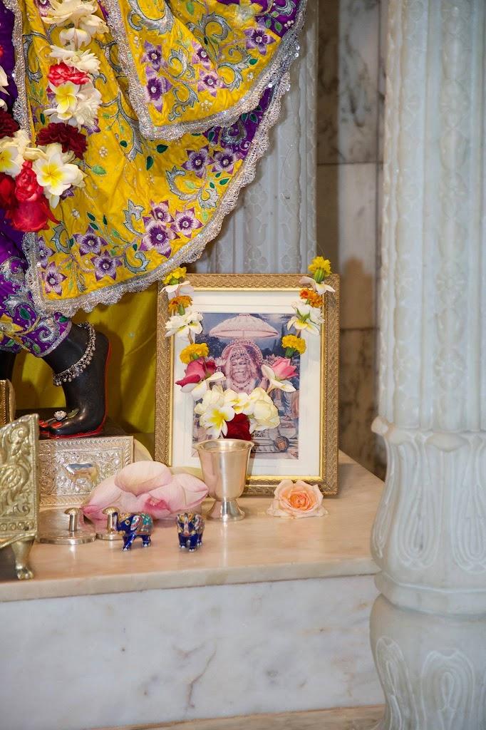 ISKCON New Govardhana Deity Darshan 22 Dec 2016 (61)