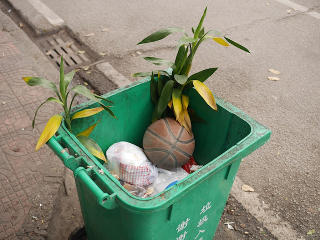 partially filled garbage bin with greenery and a basketball in Jieyang