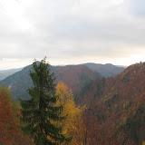 rajd październikowy 2006