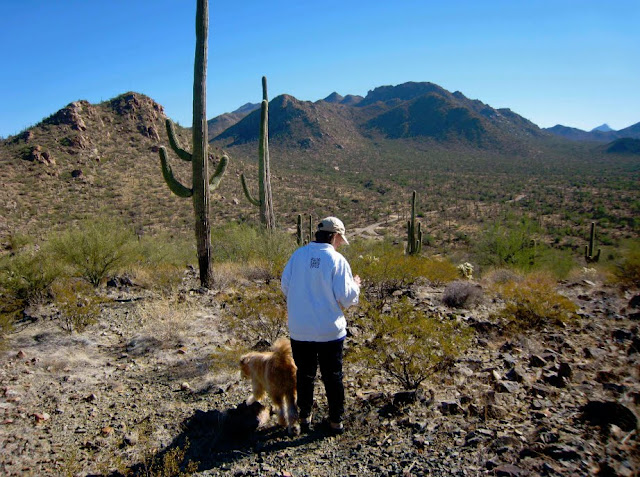 Mom in Saguaro National Park. Lassoing the Sun: A Year in America's National Parks