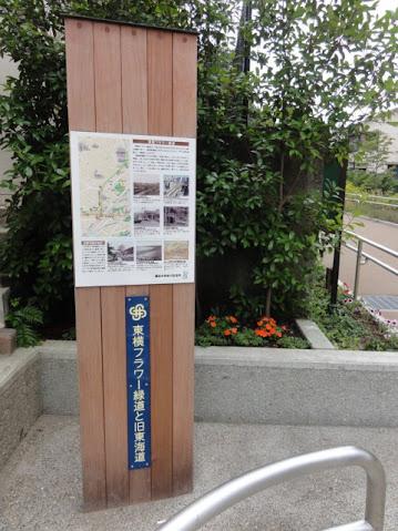 東横フラワー緑道と旧東海道五十三次