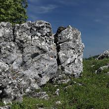 IMG_8565_panorama.jpg
