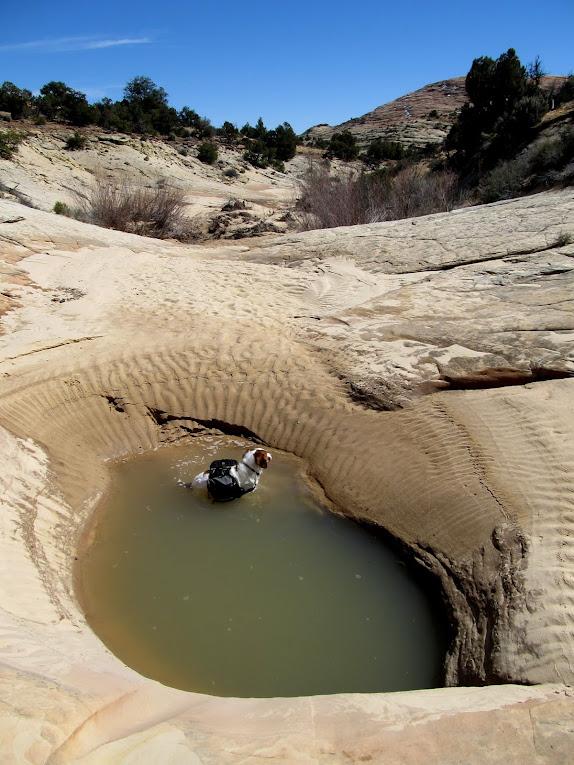 There were potholes-a-plenty, so Torrey kept cool