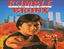 فيلم Rumble in the Bronx