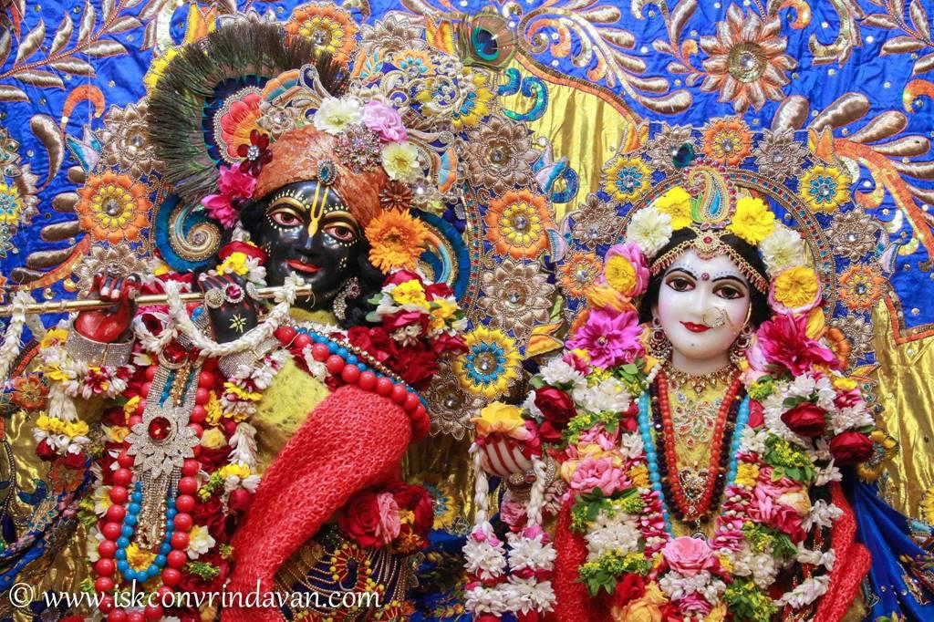 ISKCON Vrindavan Sringar Deity Darshan 03 Feb 2016 (2)
