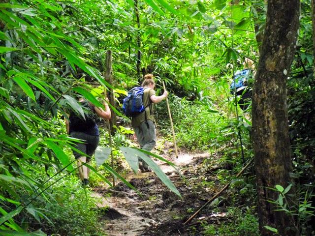 Hiking through Rajkandi Reserve Forest toward Hamham Waterfalls