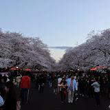 2014 Japan - Dag 1 - marjolein-IMG_0175-0103.JPG