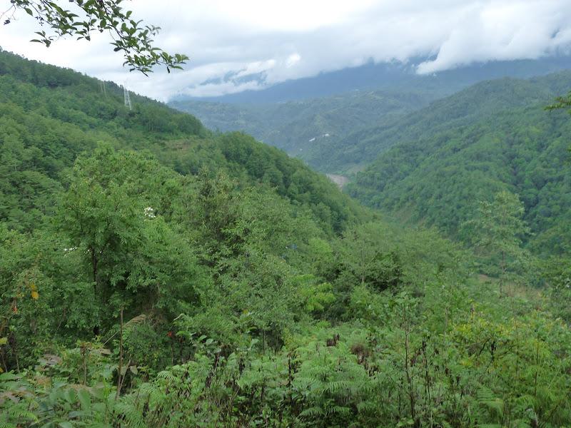 Chine .Yunnan,Menglian ,Tenchong, He shun, Chongning B - Picture%2B945.jpg