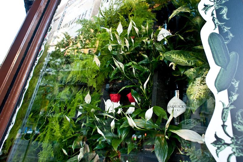 Jardín vertical leaf.box barcelona expositor escaparate publicidad
