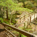 Timber bridge across creek at Boarding House Dam in the Watagans (322529)