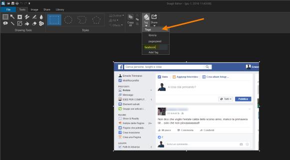 facebook-snagit-tag