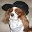 Carl Windhausen's profile photo