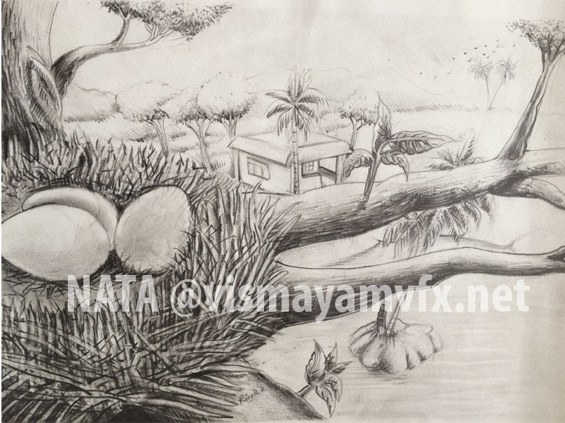 IMG_3116_0000_NATA @vismayamvfx.net copy 26