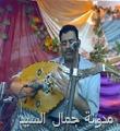 الفنان علوي فيصل علوي2