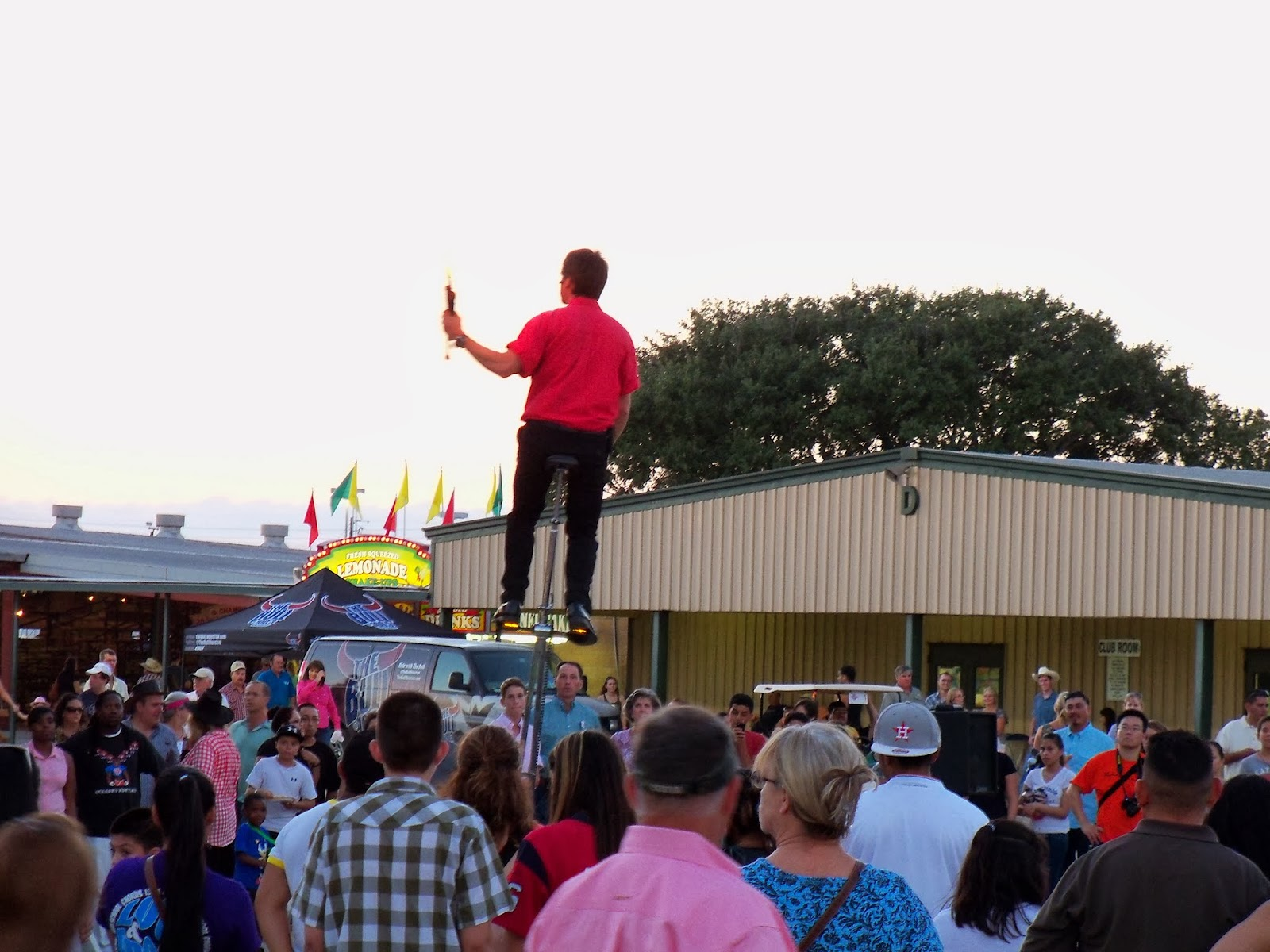 Fort Bend County Fair 2013 - 115_7916.JPG