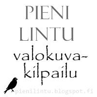 PieniLintu4
