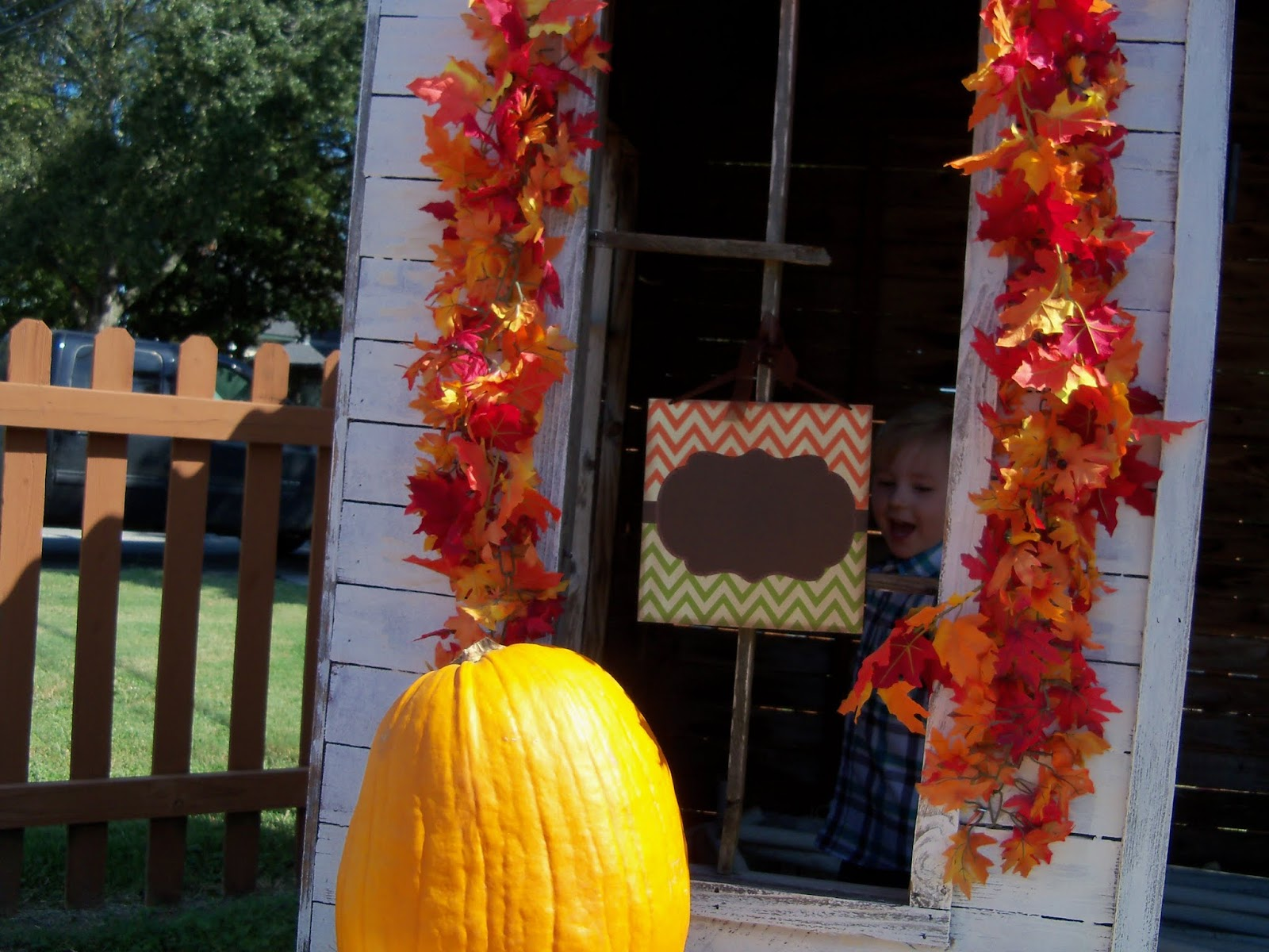 Pumpkin Patch 2015 - 100_0435.JPG
