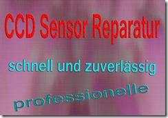 Lumix CCD Sensor Reparatur