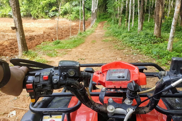 ATV ride through the lush green Jungle in Krabi